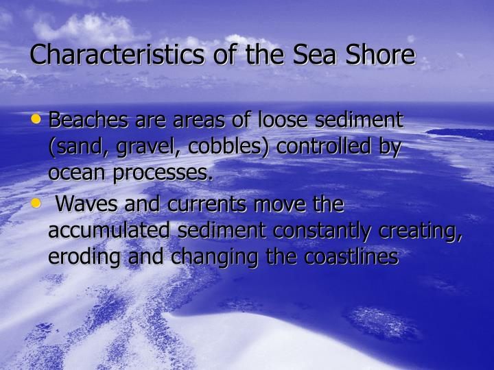Characteristics of the sea shore