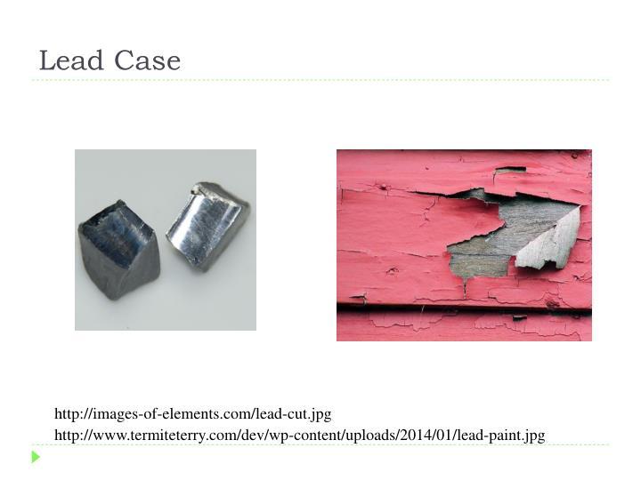 Lead Case