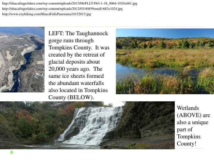 http://ithacafingerlakes.com/wp-content/uploads/2013/06/FLLT-P63-1-18_0064-1024x681.jpg