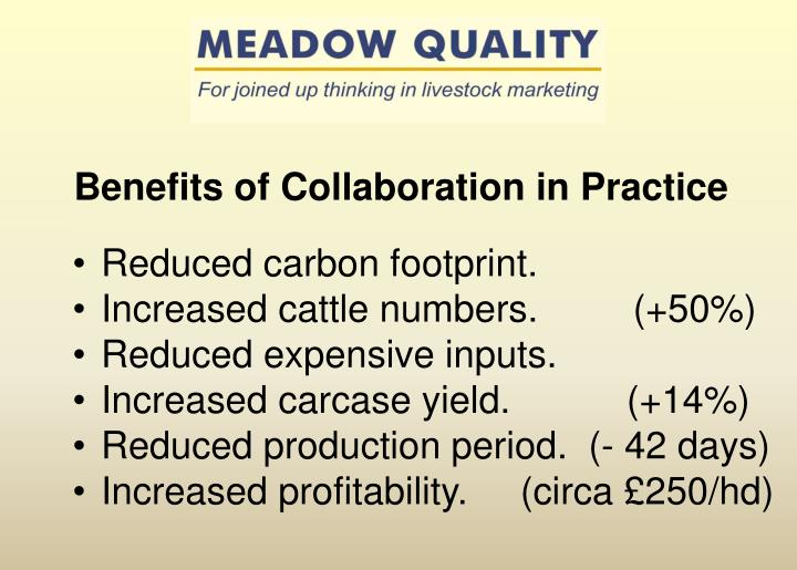 Benefits of Collaboration in Practice