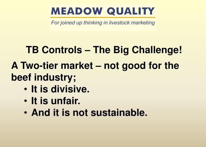 TB Controls – The Big Challenge!