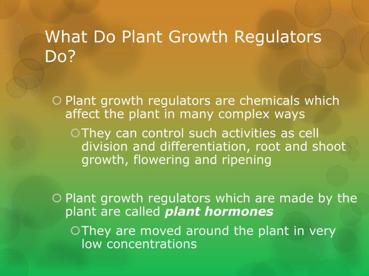 What Do Plant Growth Regulators Do?