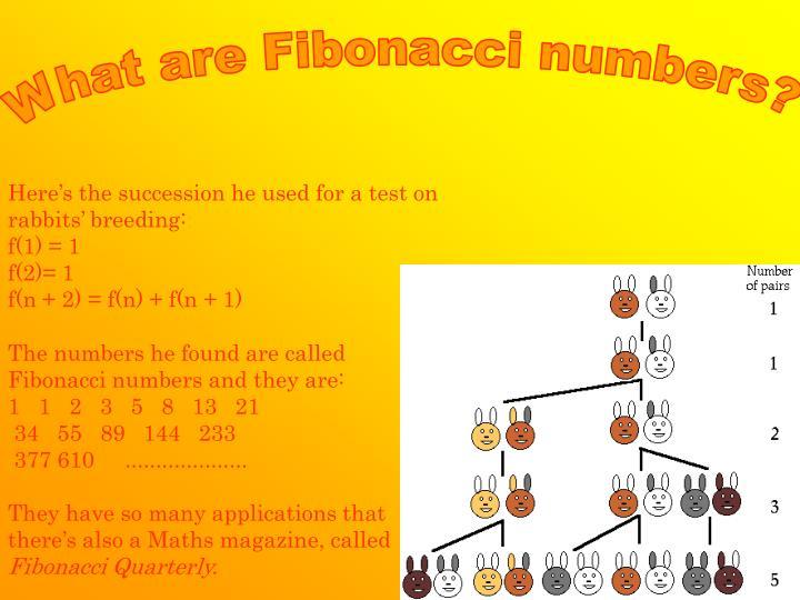 What are Fibonacci numbers?