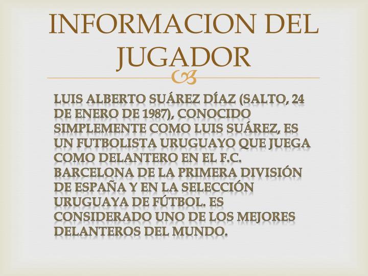 INFORMACION DEL JUGADOR