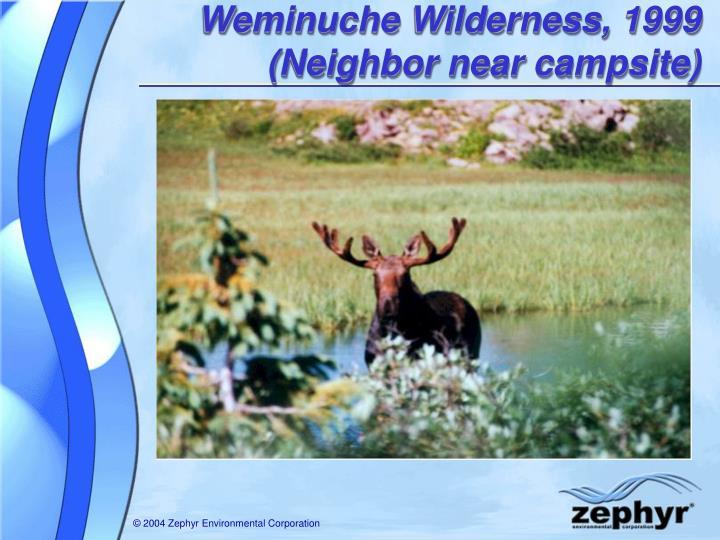 Weminuche Wilderness, 1999