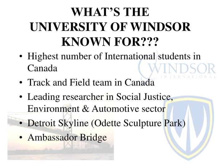 What s the university of windsor known for