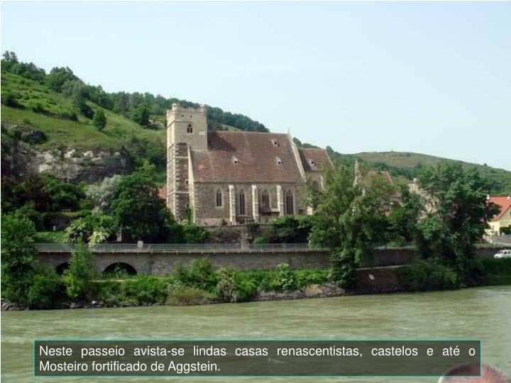 Neste passeio avista-se lindas casas renascentistas, castelos e at o Mosteiro fortificado de Aggstein.