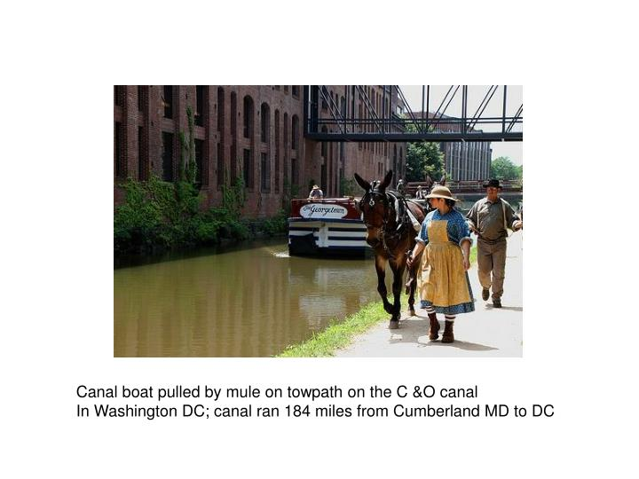 Canal boat pulled by mule on towpath on the C &O canal