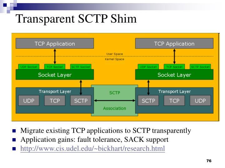 Transparent SCTP Shim