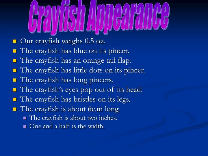 Crayfish Appearance