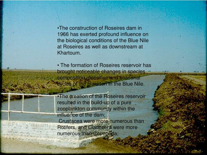 The construction of Roseires dam in 1966 has exerted profound influence on the biological conditions of the Blue Nile at Roseires as well as downstream at Khartoum.
