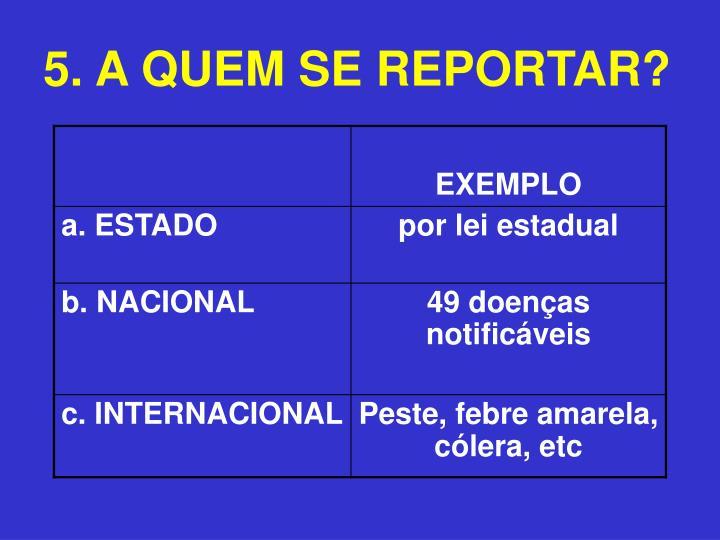5. A QUEM SE REPORTAR?