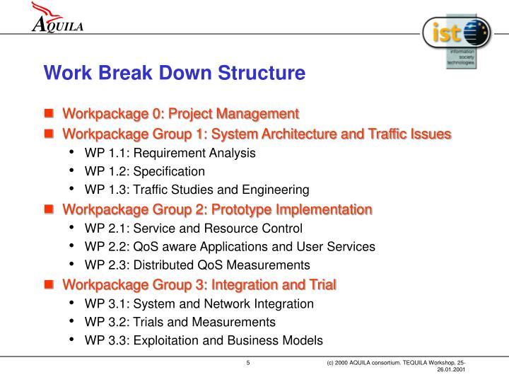 Work Break Down Structure