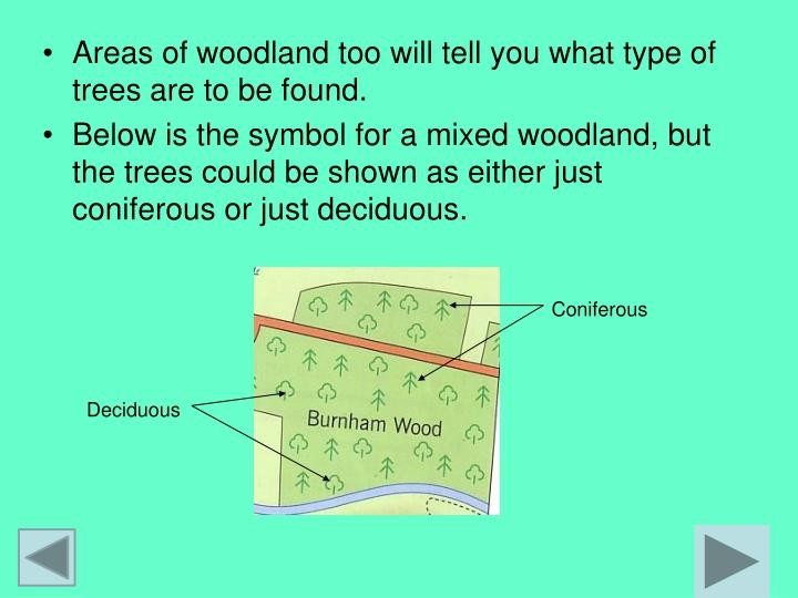 Areas of woodland too will tell you what type of trees are to be found.