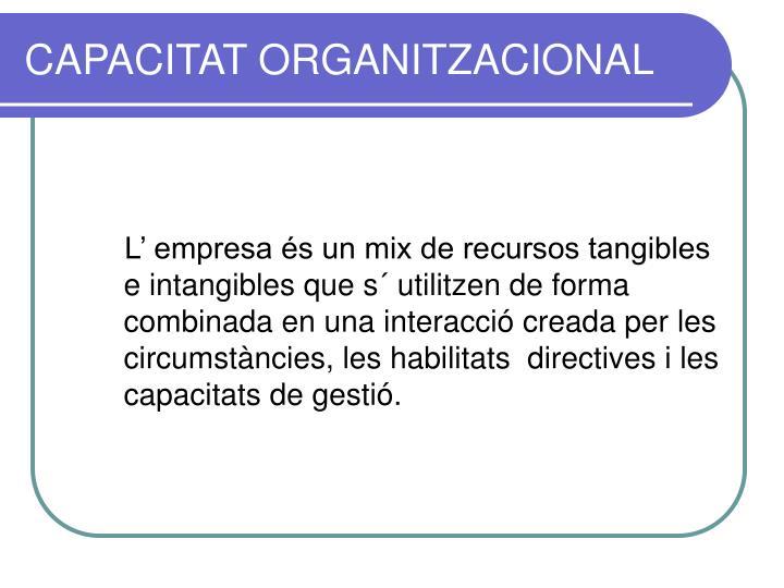 CAPACITAT ORGANITZACIONAL