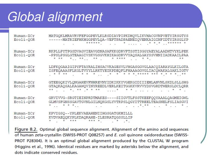 Global alignment