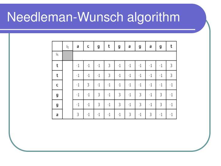 Needleman-Wunsch algorithm