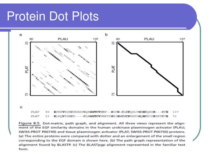 Protein Dot Plots