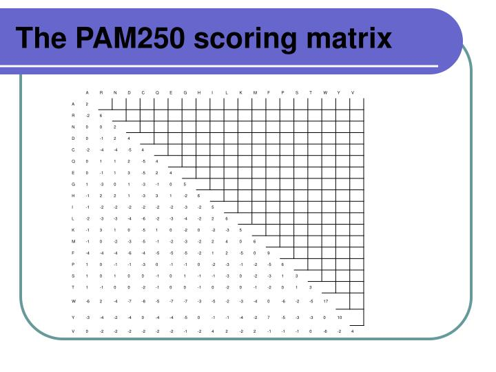The PAM250 scoring matrix