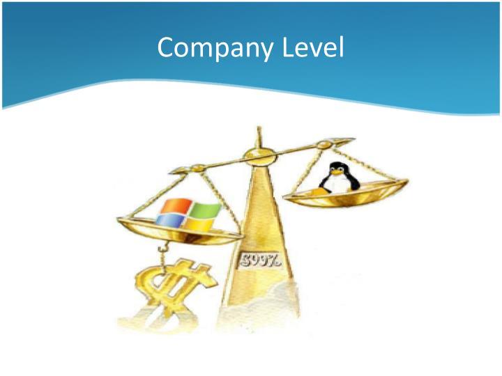 Company Level