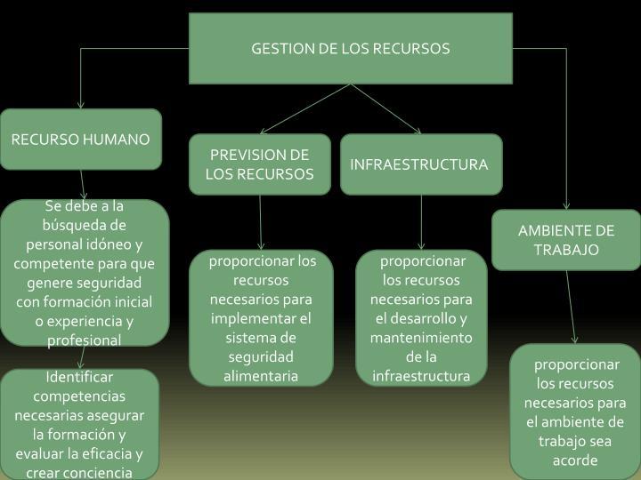 GESTION DE LOS RECURSOS