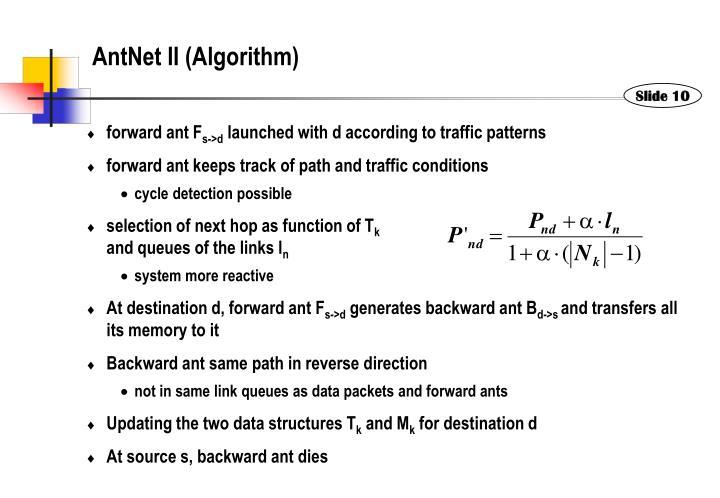 AntNet II (Algorithm)