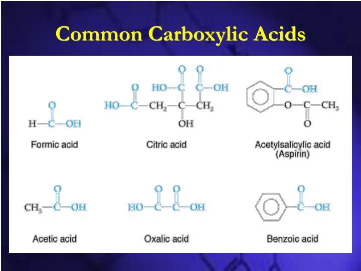 Common Carboxylic Acids