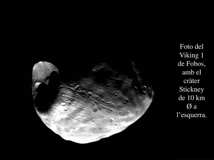 Foto del Viking 1 de Fobos, amb el cràter Stickney de 10 km