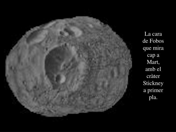 La cara de Fobos que mira cap a Mart, amb el cràter Stickney a primer pla.