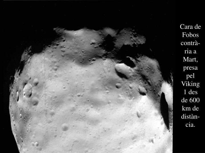 Cara de Fobos contrà-ria a Mart, presa pel Viking 1 des de 600 km de distàn-cia.