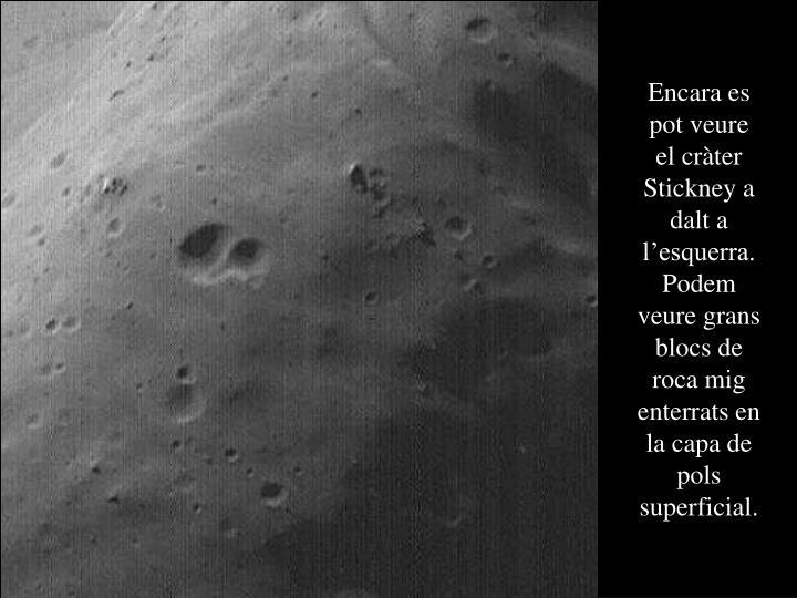 Encara es pot veure el cràter Stickney a dalt a l'esquerra. Podem veure grans blocs de roca mig enterrats en la capa de pols superficial.