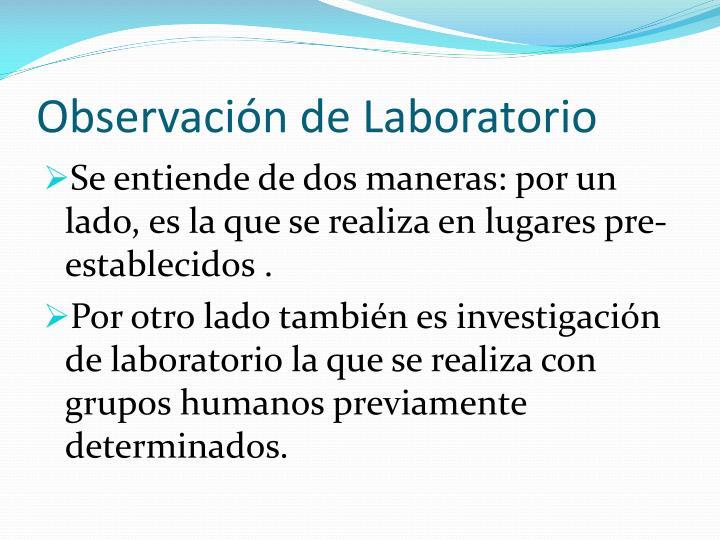 Observación de Laboratorio