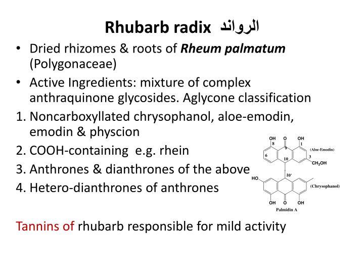 Rhubarb radix