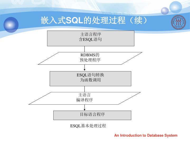 主语言程序