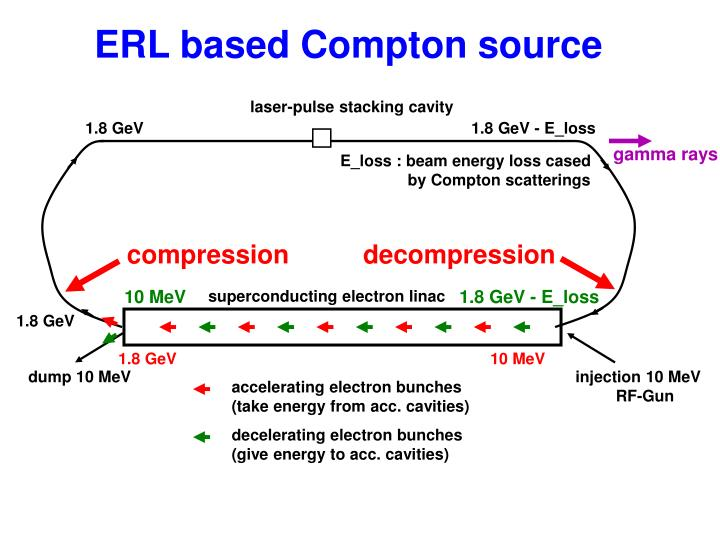 ERL based Compton source
