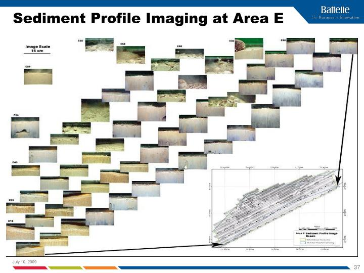 Sediment Profile Imaging at Area E