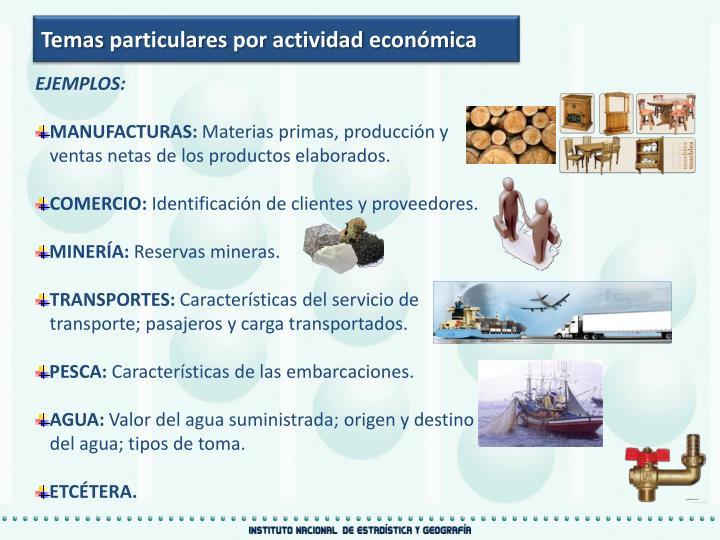 Temas particulares por actividad económica
