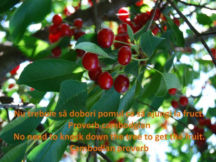 Nu trebuie să dobori pomul ca să ajungi la fruct.   Proverb
