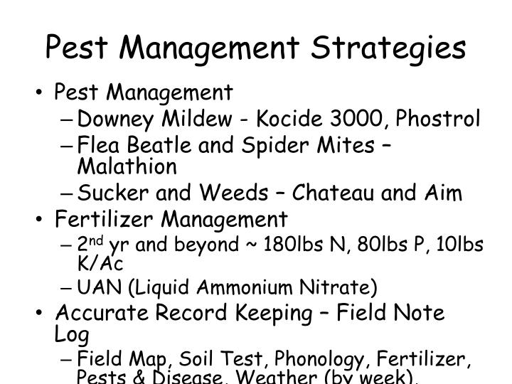 Pest Management Strategies