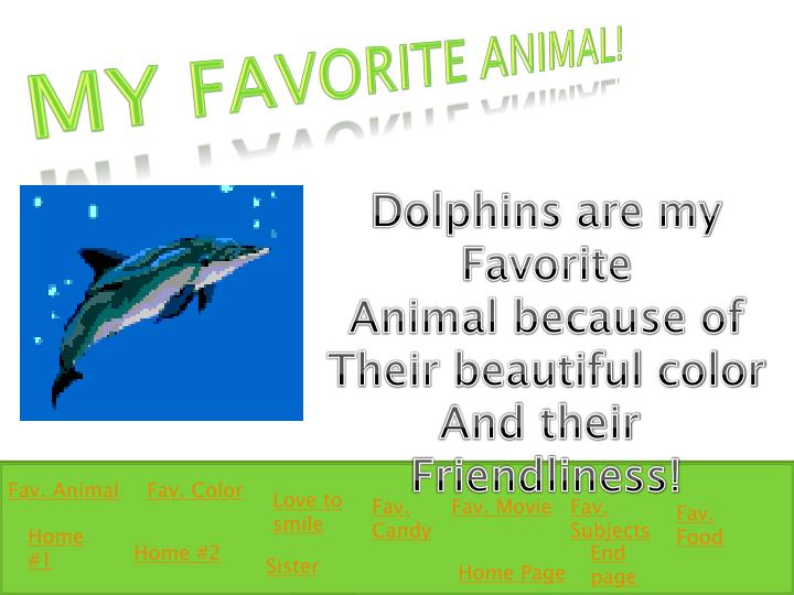 My Favorite Animal!