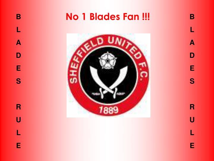 No 1 Blades Fan !!!