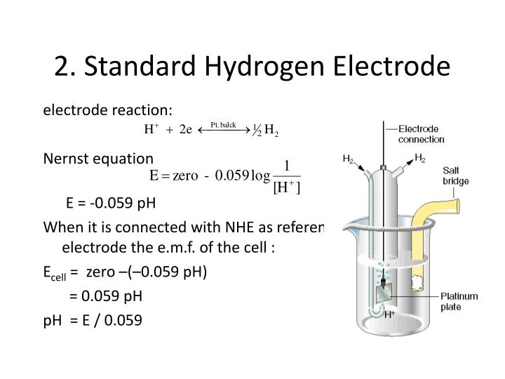 2. Standard Hydrogen Electrode