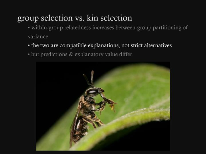 group selection vs. kin selection
