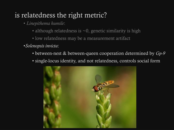 is relatedness the right metric?