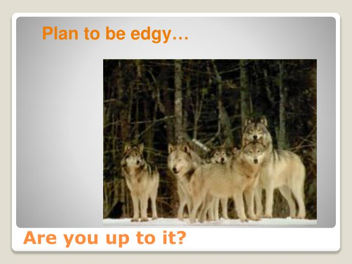 Plan to be edgy…