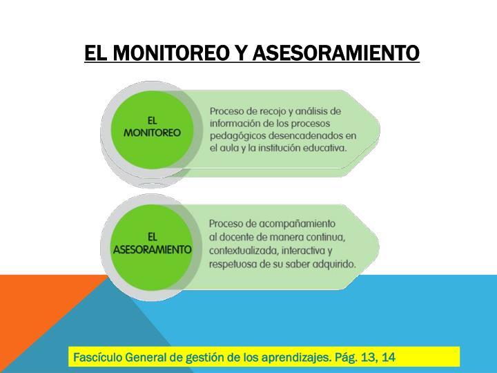 El monitoreo y asesoramiento
