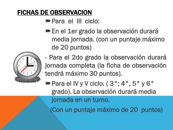FICHAS DE OBSERVACION