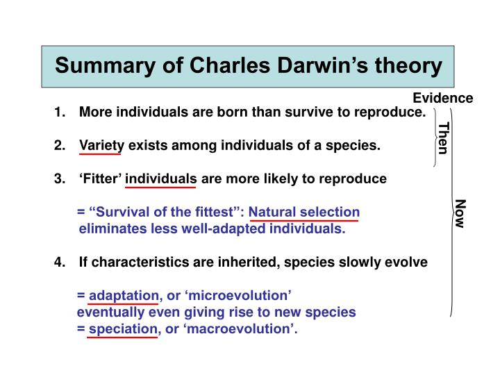an overview of the holes in the theory of evolution by charles darwin Darwin's visit to the islands had a resounding impact on the formation of his theory of charles darwin the concept of the evolution of species is based.