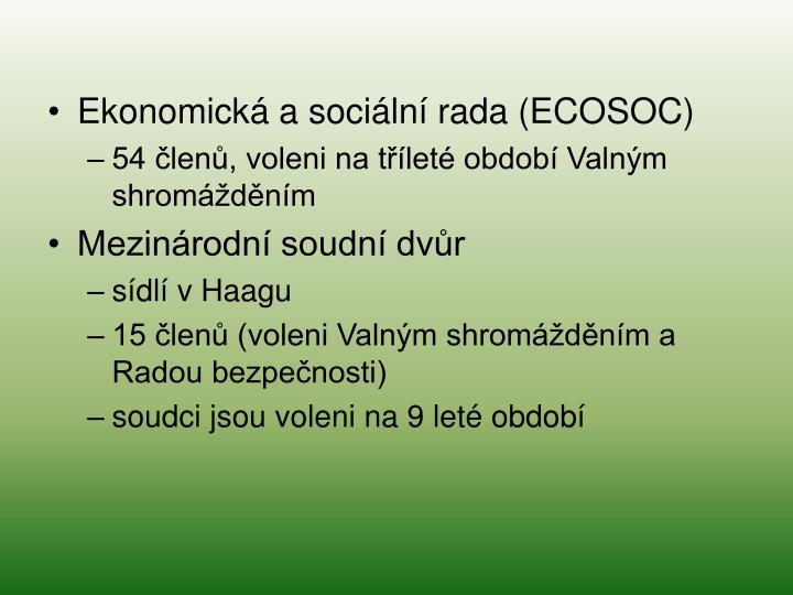 Ekonomická a sociální rada (ECOSOC)