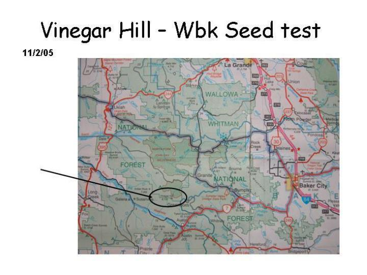 Vinegarseedtest